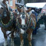 Winterratsch 2017